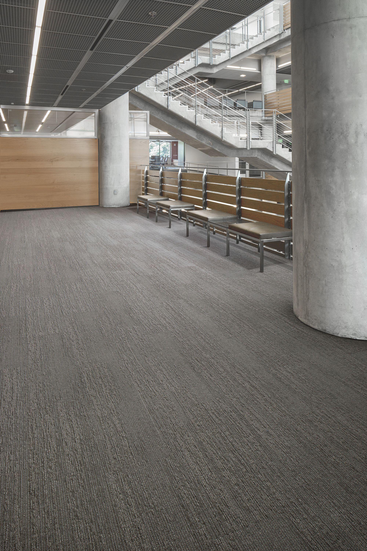 Carpet Tile Drifted Ground Tile Solid Ground Mohawk