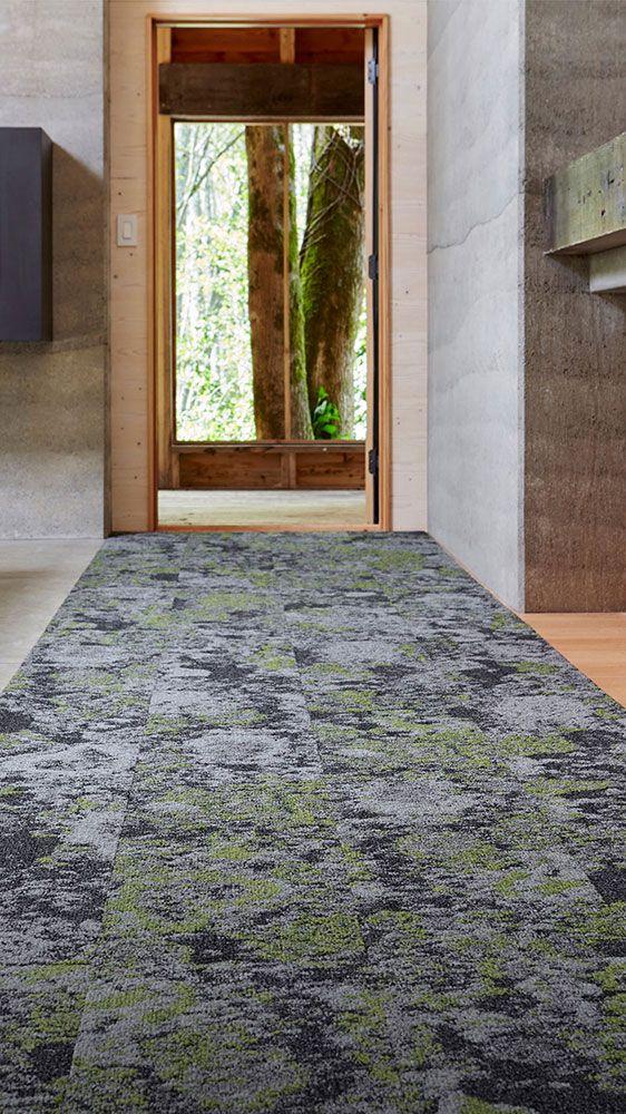 Lichen Carpet Collection Lichen Carpet Tile Mohawk Group