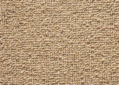 Camel Flax