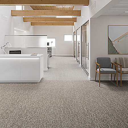 Baccharis Tile 12by36 In Healthy Environments