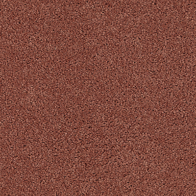 Deep Coral