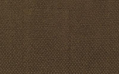 Sepia Shade