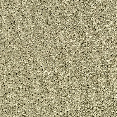 Endless Meadows