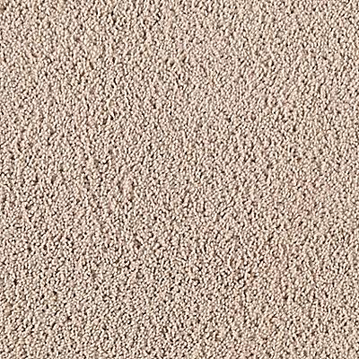 Parched Sand