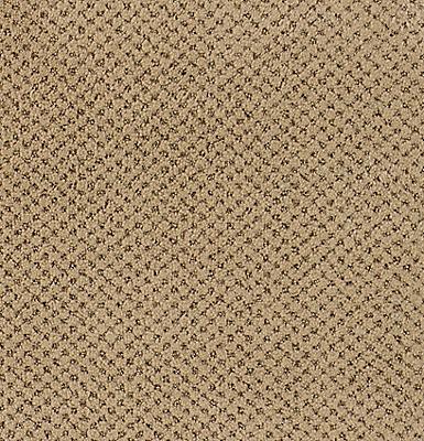Camel Cloth