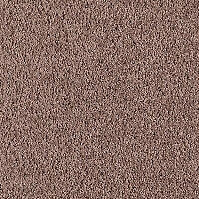Taupe Star
