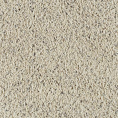 Coastal Sands
