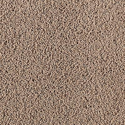 Dry Sprig