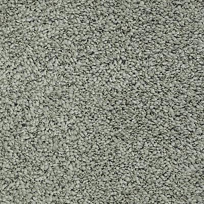 Silverpine