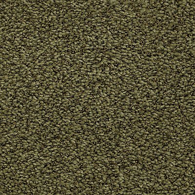 Jungle Moss