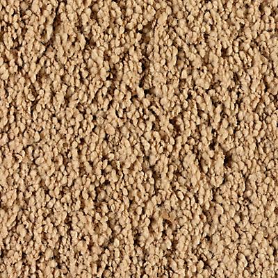 Sandy Hollow