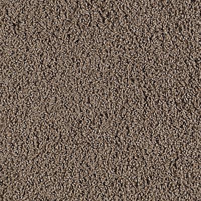 Cape Moss