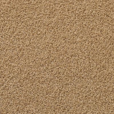 Gillette Lane Cougar Carpeting Mohawk Flooring