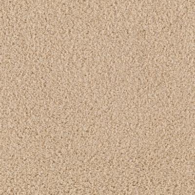 Take Charge Carpet Wild Oats Carpeting Mohawk Flooring