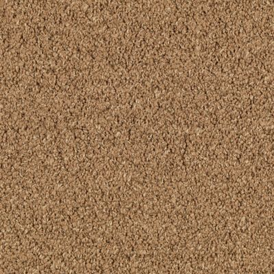 Earthly Texture, Flax Seed Carpeting | Mohawk Flooring