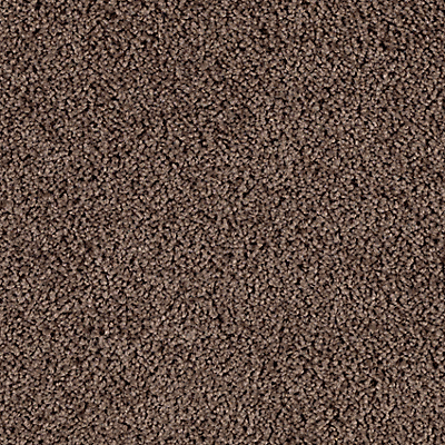 Rich Taupe