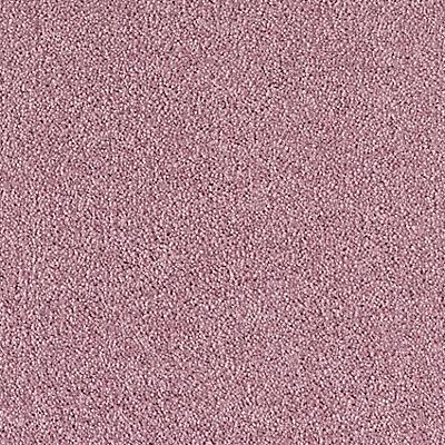 Purple Comet