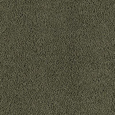 Northwestern Pine