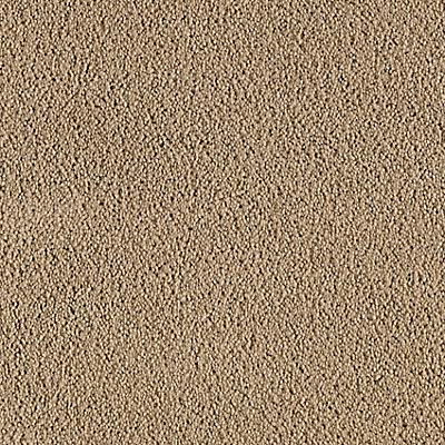 Astoria Dunes