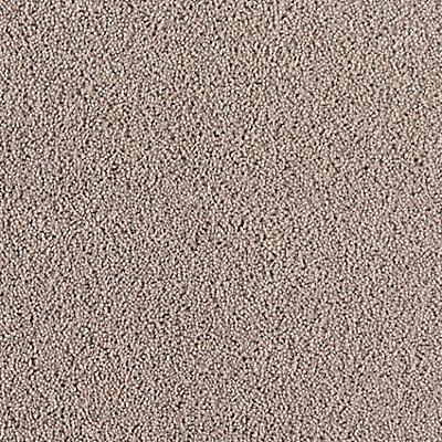 Gentle Taupe