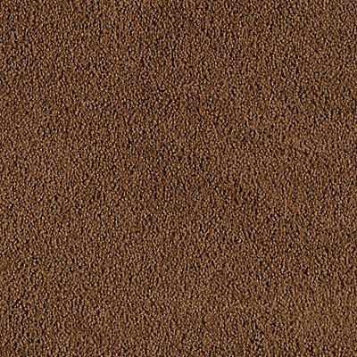 Polished Copper