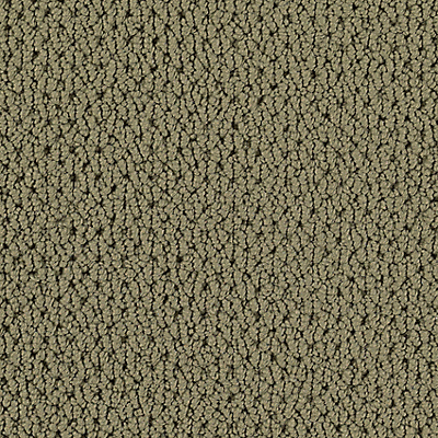 Meadow Clover