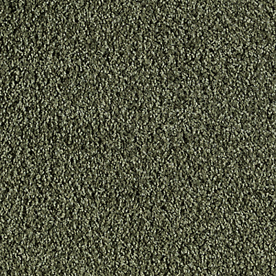 Ivy Terrace