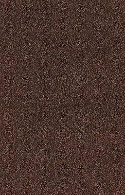 Bronze Wood