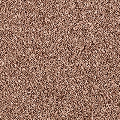 Pale Sepia