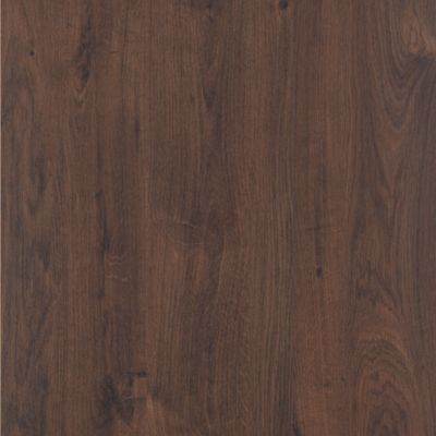 Chocolate Truffle Oak
