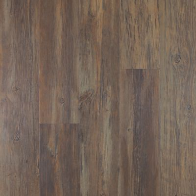 Buckhorn Pine