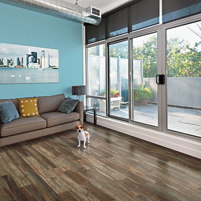 Cambridge Abbey Oak Pergo Portfolio Wetprotect Laminate