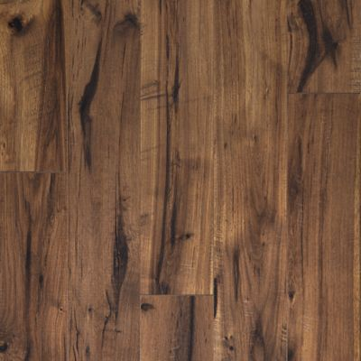 Creekbed Hickory