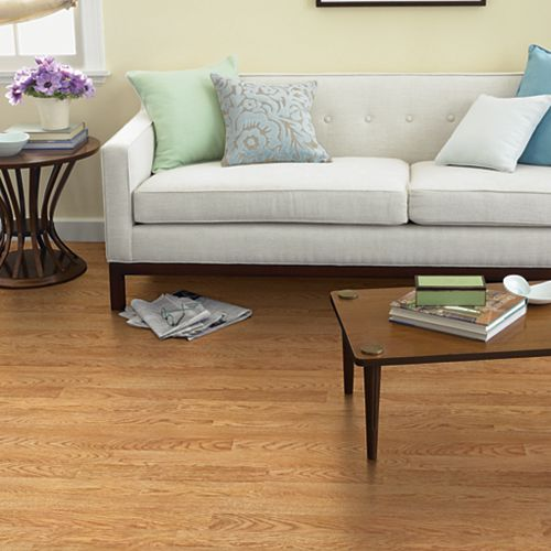 Royal Oak Pergo Xp Laminate Flooring Pergo 174 Flooring