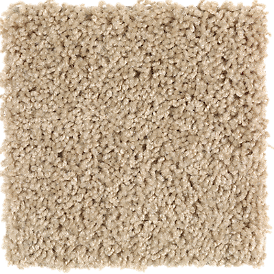 True harmony tradewind carpeting mohawk flooring for Mohawk flooring warranty