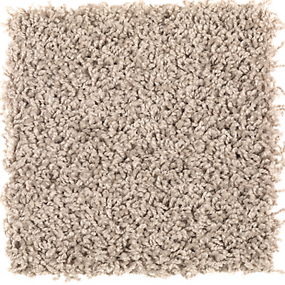 Carpet Color Trends Trendy Carpet Colors Carpeting Color