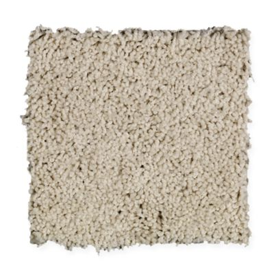 Home Solutions. Wear-Dated. Carpet Swatch