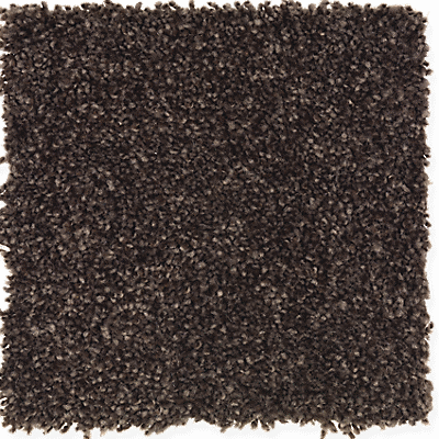 Dried Peat