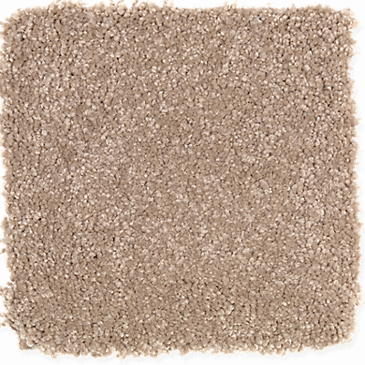 Carpet Trends New Carpet Styles Latest Carpet Trends
