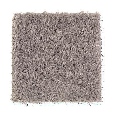 Dolphin Carpet And Tile Area Rugs Area Rug Ideas