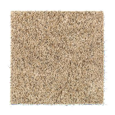 Sunsations Haystack Carpeting Mohawk Flooring