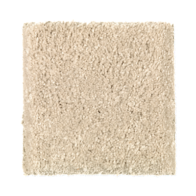 Mohawk Plush Carpet Floor Matttroy
