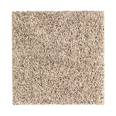 Artistic Influence Fleck 04 Carpeting Mohawk Flooring