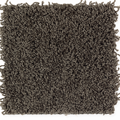 Dried Peat Solid
