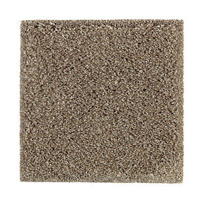Perfectly Composed Tonal Urban Putty Tonal Carpeting