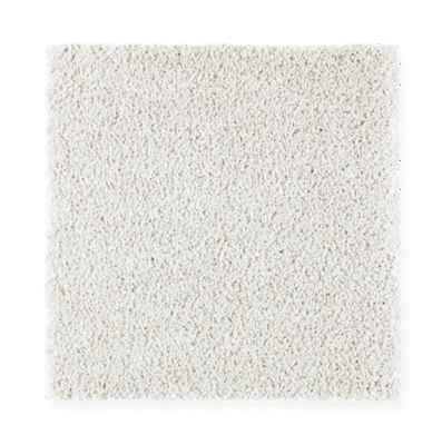 Carpet Swatch