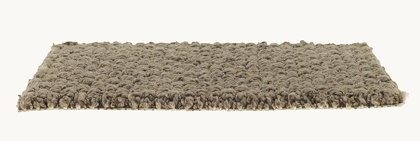 how to professionally clean smartstrand carpet