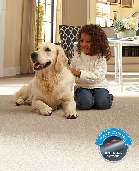 SmartStrand Forever Clean. Superior stain resistant carpet from Mohawk Flooring.