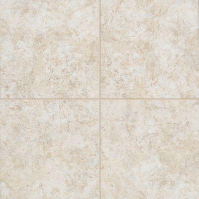 Tile Flooring Samples