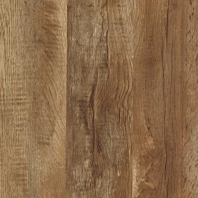 Buckskin Oak